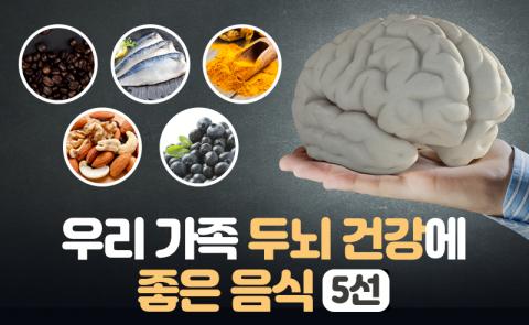 우리 가족 두뇌 건강에 좋은 음식 5선