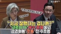 """주호영 """"지금 잘했다는 겁니까?""""…코로나19 '韓中 문제' 놓고 강경화에 '호통'"""