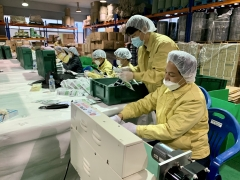 영암군, 마스크 생산업체서 자원 봉사 '구슬 땀'