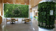 aT, 공기정화식물 활용 그린오피스 조성