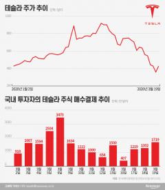 테슬라 직구족 '잠 못 이루는 밤'…고점 대비 1/3 토막