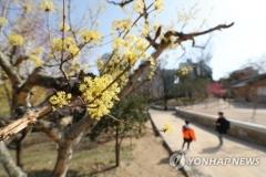 월요일 전국 맑고 포근한 봄 날씨