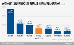신한·오렌지 내년 7월 통합···'자산 67조' 생보업계 4위 탄생