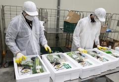 전남농협, 코로나19 확산…전직원 친환경농산물 판매에 '총력'