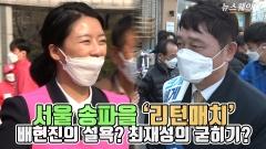 서울 송파을 '리턴매치'…배현진의 설욕? 최재성의 굳히기?