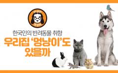 [친절한 랭킹씨]순위로 본 한국인의 반려동물 취향···우리집 '멍냥이'도 있을까