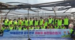 NH농협은행 광주 지점장, 영농철 농촌 일손돕기 나서