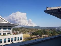 안동 풍천 산불 확산···주민 150여명 긴급 대피