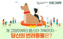 [인포그래픽 뉴스]개·고양이부터 햄스터·거북까지···당신의 반려동물은?