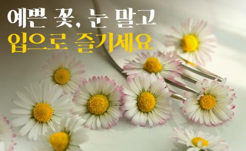예쁜 꽃, 눈 말고 입으로 즐기세요