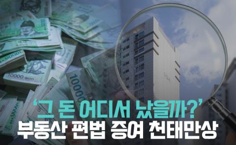 '그 돈 어디서 났을까?' 부동산 편법 증여 천태만상