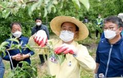 이철우 도지사, 화훼·과수농가 잇달아 방문해 '현장 목소리 경청'