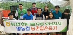 농협하나로유통 호남지사, 영농철 농촌일손돕기 '구슬땀'