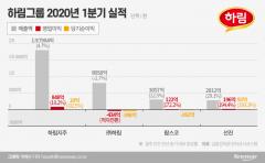 고민 깊어지는 김홍국 하림 회장…'닭 장사' 업황 따라 들쭉날쭉