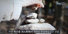 진도군청 남여 공무원의 유투버 일탈 '눈길'