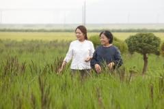 전남도, '유기농 가업' 잇는 '청년농' 늘어