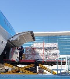 ㈜한진, 민관 협력 '긴급 항공화물 운송' 참여