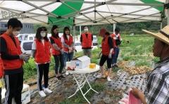 친환경 농산물 재배 농가 일손 도와 外