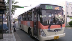 영천시, 555번 등 시내버스 일부노선 개편