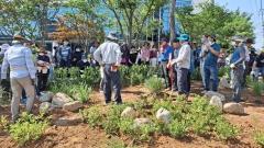 장성군 시민정원사 교육생, 버려진 땅에 정원 조성