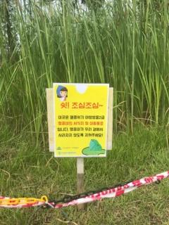 인천업사이클에코센터 인공습지서 멸종위기종 2급 맹꽁이 발견 外