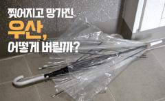 찢어지고 망가진 우산, 어떻게 버릴까?