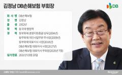 '손보업계 최장수 CEO' 김정남, DB손보 부회장 승진