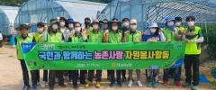 전남농협, 영광군 군서면에서 농촌일손돕기