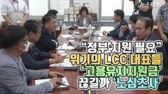 """""""정부 지원 필요"""" 위기의 LCC 대표들 '고용유지지원금' 끊길까 '노심초사'"""