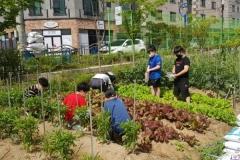 경산시, 미래농부 육성 '어린이 농부학교' 운영