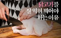닭고기를 잘 익혀 먹어야 하는 이유