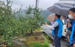 청도군, '농작물 병해충 예찰단' 상시 운영