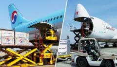 대한항공·아시아나항공, 화물특수로 버텼다…3분기는?