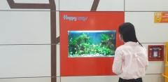 인천교통공사, 만수역 대합실에 '디지털수족관' 설치