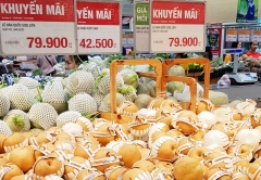 aT, 농식품 수출물류비 추가지원 연말까지 확대 운영
