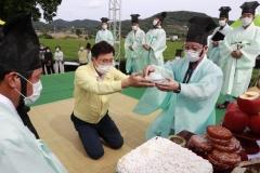보성군, 전국 첫 온택트 보성세계차엑스포 성료