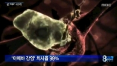 美텍사스주 수돗물서 '뇌 먹는 아메바' 검출