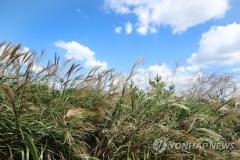 전국 대체로 맑음…동해안 일부 비