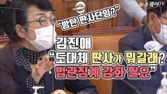"""김진애 """"도대체 판사가 뭐길래?…법관징계 강화 필요"""""""