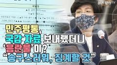 """민주평통 국감 자료에 음란물이?…""""송구스러워, 징계할 것"""""""