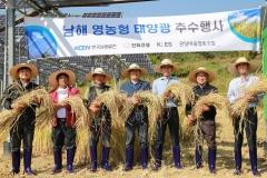 한화큐셀, 경남 남해 영농형 태양광 시범단지서 벼 추수
