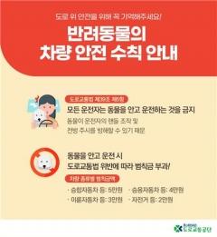 """도로교통공단 """"반려동물과 차량에 동승 시 반드시 안전조치해야"""""""