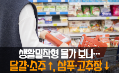 [카드뉴스]생활밀착형 물가 보니···달걀·소주↑, 샴푸·고추장↓