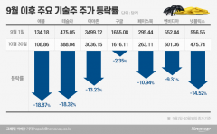 """""""美 대선 끝나도 반등 미지수""""…서학개미 잠 못이루는 밤"""