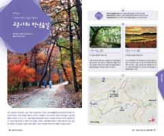 경북도, 테마별 여행지 45선 담은 경북여행책자 발간