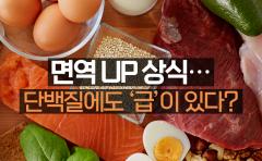 면역 UP 상식…단백질에도 '급'이 있다?