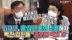 """김태년, 말 끊고 회의 진행하자 빡친 김진애 """"중간에 막지 마"""""""