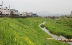 칠곡군 동정천, 환경부 생태하천복원 우수사례 공모전서 '장려상'