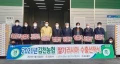 김천 딸기, 새해 첫 러시아 수출길 올라