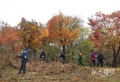 정읍시, 산림 재정지원 일자리 사업 추진